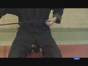 Seminar_aikijutsu